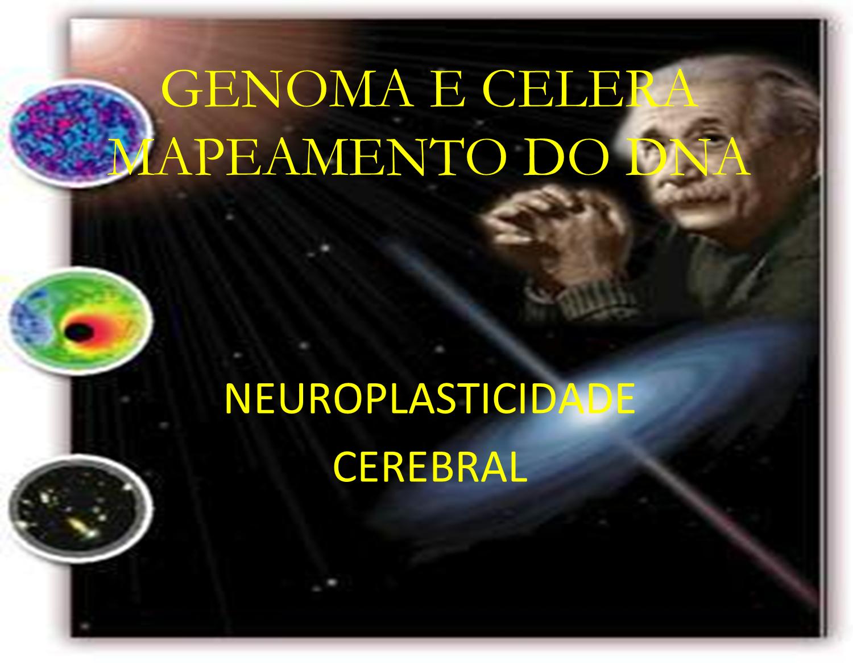 Einstein - DNA - Física Quântica